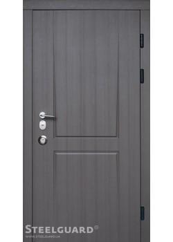 Двери Olymp 2 цвета Steelguard