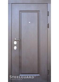 Двери DP-1 двухцветная Steelguard